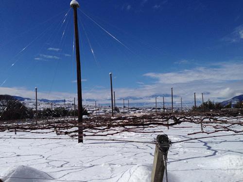 山梨は観測史上最高の大雪